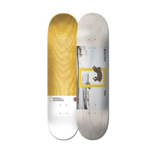 Tabla de Skateboard 8.1 Nat Geo Westgate Cat